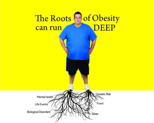 OBESITY ROOTS